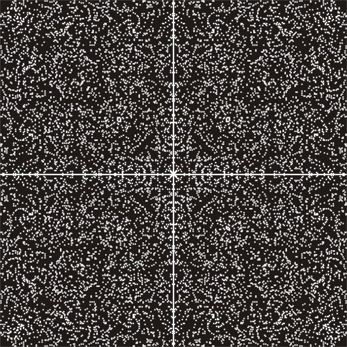 pi-Symetriex4-negativ-RZ.